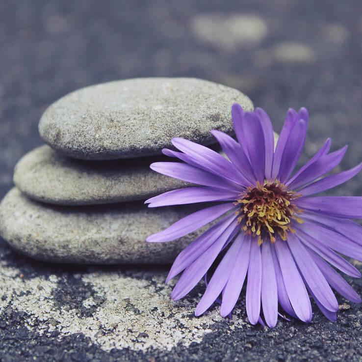 Girondins Fitness - Meditation